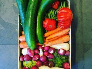 Gemüseküche: Von orientalisch bis vegan @ Marxers Kochwelt  | Buchs | Sankt Gallen | Schweiz